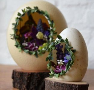 eggshell creativity