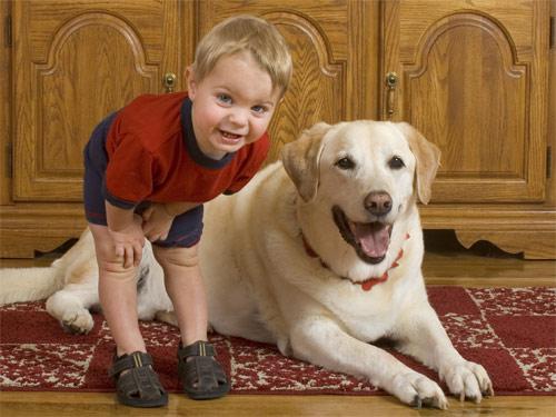 Kids & Pets Photograph