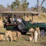 How We Keep You Safe On Safari